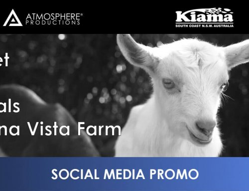 Destination Kiama – Meet The Locals – Buena Vista Farm