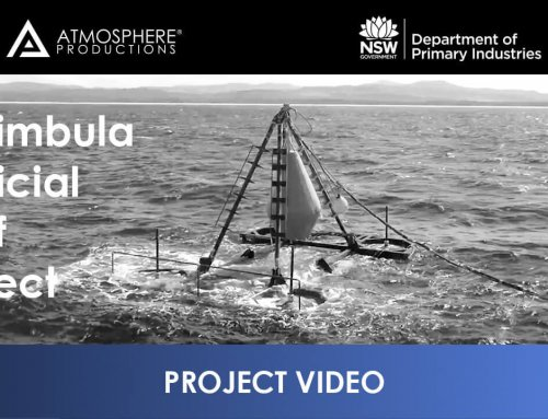 NSW Department of Primary Industries – Merimbula Reef Project